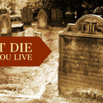 Don't Die While You Live
